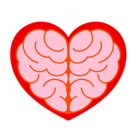 the-brain-of-the-heart