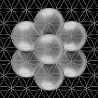 holographic-principle-and-flower-of-life