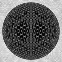 proton-trou-noir-haramein