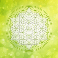 flower-of-life-and-quantum-geometry