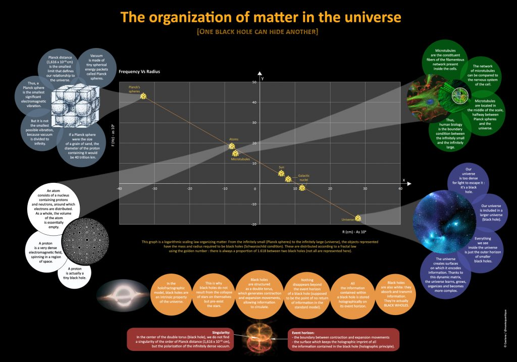 the-organization-of-matter-in-the-universe