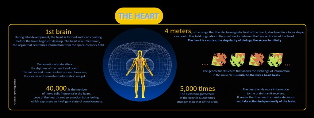 facts-and-figures-about-the-heart