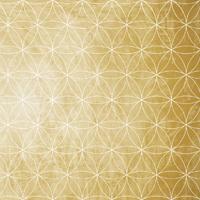 principe-de-vibration-fleur-de-vie